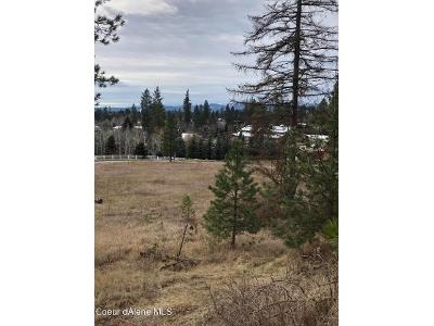 E-whispering-pines-rd-Hayden-ID-83835
