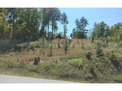 32-point-overlook-trail-lot-32-Murphy-NC-28906