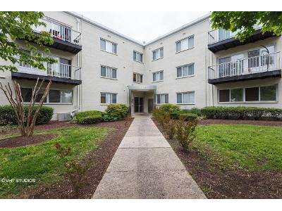Chillum-rd-apt-311-Hyattsville-MD-20782
