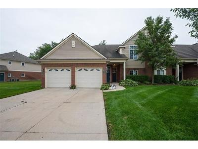 Shadywood-dr-#-41-Sterling-heights-MI-48312