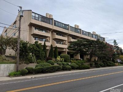Main-st-apt-210-Port-washington-NY-11050