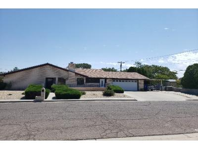 Johnson-st-Las-cruces-NM-88005