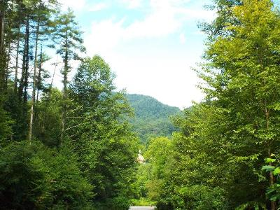 Woods-trail-43-Cullowhee-NC-28723