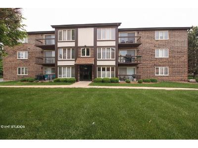 Circle-ct-apt-111-Crestwood-IL-60445