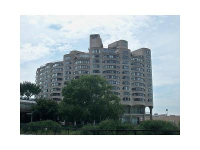 S-wells-st-apt-835-Chicago-IL-60607