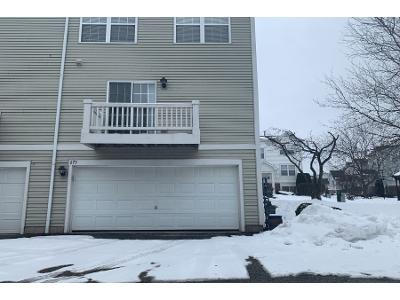 Holiday-ln-#-54-5-Hainesville-IL-60073
