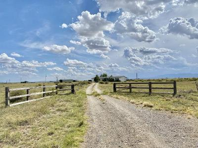 Alpaca-road-Estancia-NM-87016