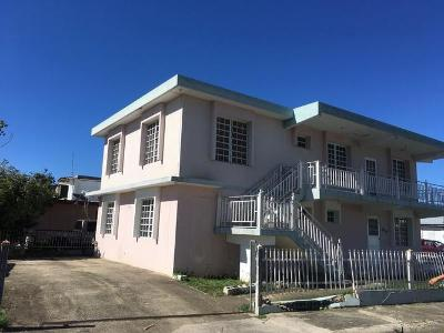 Playas-164-calle-robles-Anasco-PR-00610