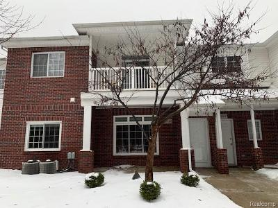 Twin-oaks-dr-Sterling-heights-MI-48314
