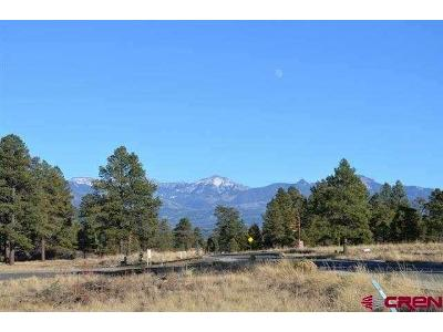 Harman-ave-Pagosa-springs-CO-81147