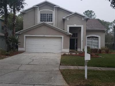 Royal-george-ave-Odessa-FL-33556