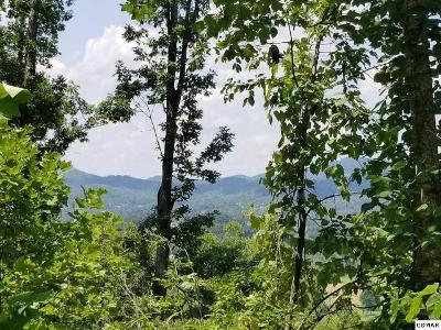 5-clabo-mountain-lane-Sevierville-TN-37862