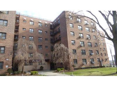15-204-th-st-apt-34b-Hollis-NY-11423