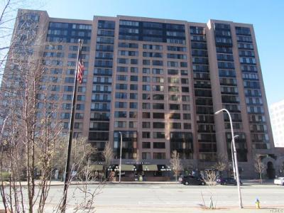 Martine-ave-apt-203-White-plains-NY-10606