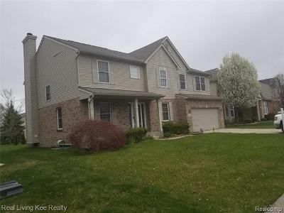 Elmhurst-dr-Sterling-heights-MI-48313