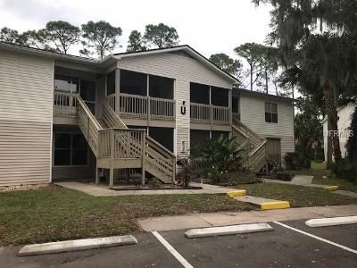 Big-tree-rd-apt-u3-Daytona-beach-FL-32119