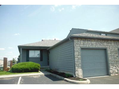 Parkgrove Way, Lewis Center, OH 43035