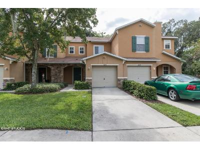 Great-carlisle-ct-Riverview-FL-33578