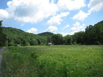 Hungard-s-creek-Alderson-WV-24910