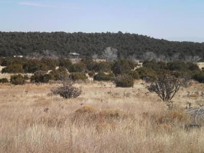 3-sandia-ridge-estates-Tijeras-NM-87059