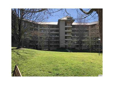 Hidden-hills-rd-apt-212-Gatlinburg-TN-37738
