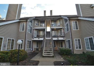 Amherst-ave-apt-c-Silver-spring-MD-20902