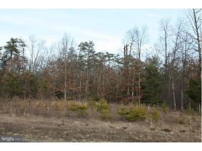 Hill-court-lot-2-Stephens-city-VA-22655