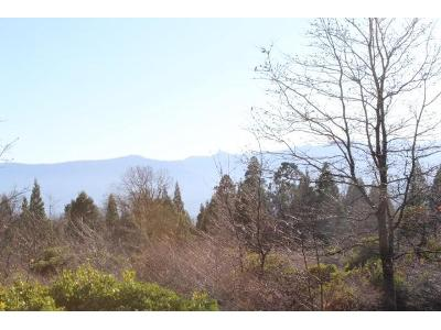 21-north-ridge-drive-Mt-shasta-CA-96067