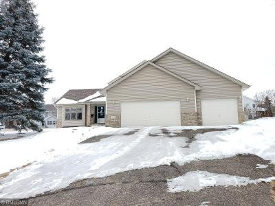 146th-ave-nw-Andover-MN-55304