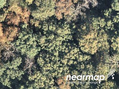 11-our-hidden-mountain-lot-11-Murphy-NC-28906