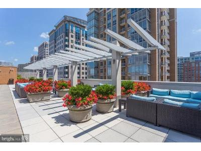 New-dominion-pkwy-apt-211-Reston-VA-20190