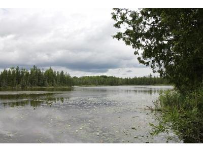 Five-mile-highway-87-acres-Onaway-MI-49765