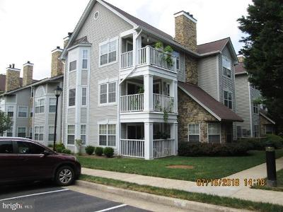 Willoughby-newton-dr-unit-13-Centreville-VA-20120