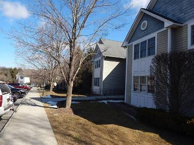 Agnew-farm-road,-unit-4-c-Armonk-NY-10504