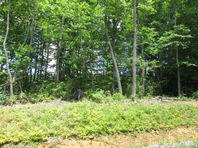 Lane-lot-33-Daniels-WV-25832
