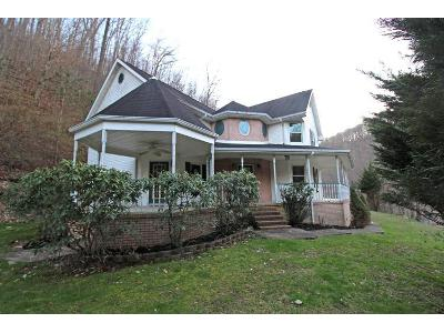 Caney-branch-rd-Chapmanville-WV-25508