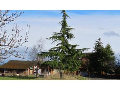 River-rd-Sequim-WA-98382
